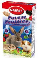 SANAL Forest Fruities, 45g - jogurta bumbiņas ar meža ogu pildījumu